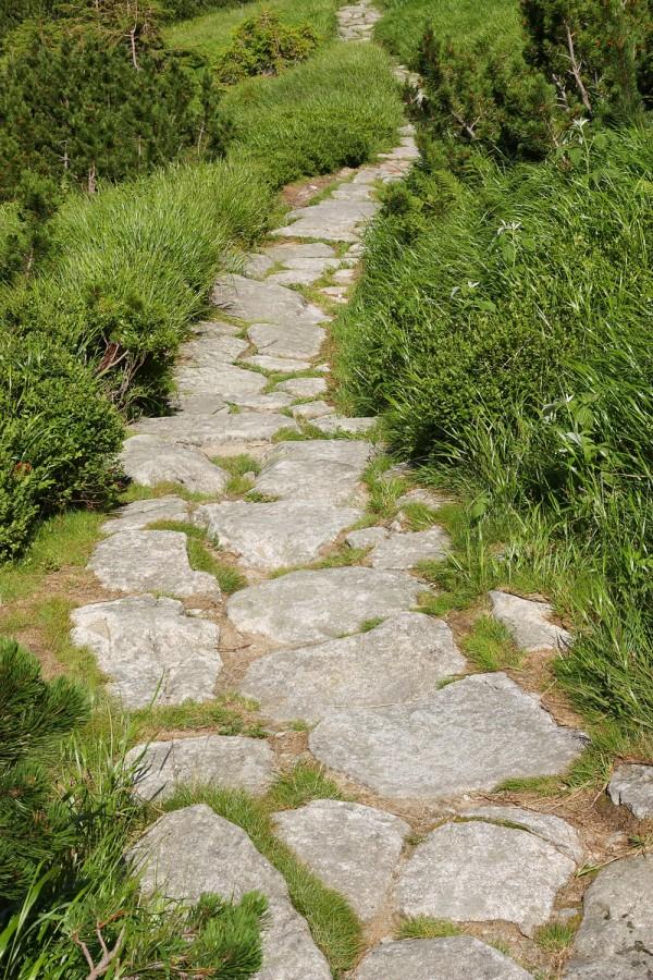 13.kameny v trávě